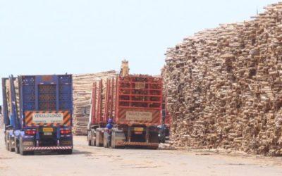 Impulsionada pela China, exportação de MS soma US$ 327 milhões